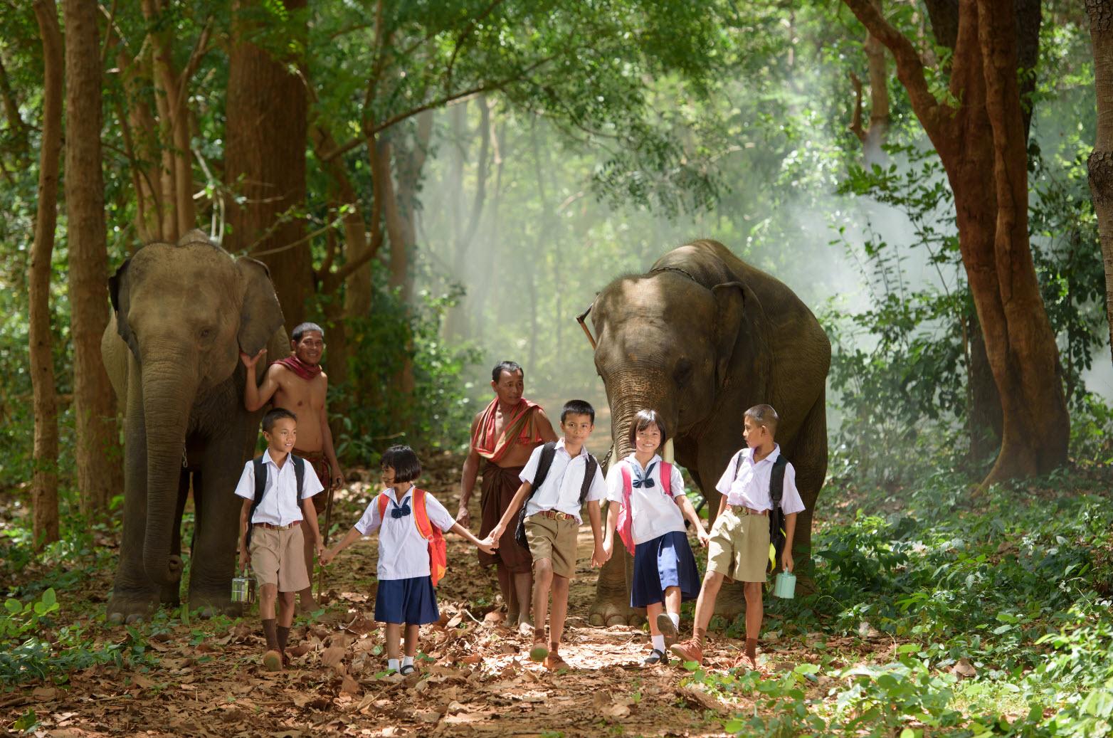 дети и слоны в Таиланде